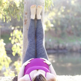 All about the pelvic floor